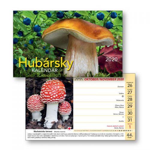S23_Hubarsky
